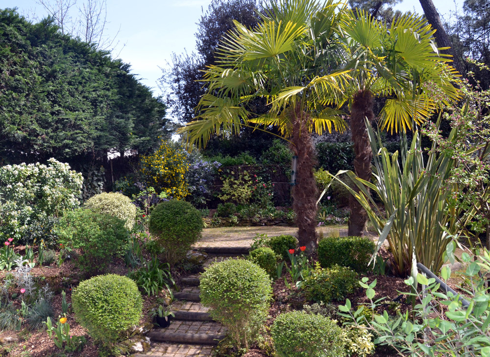 Garden design services square garden design london for Garden design service