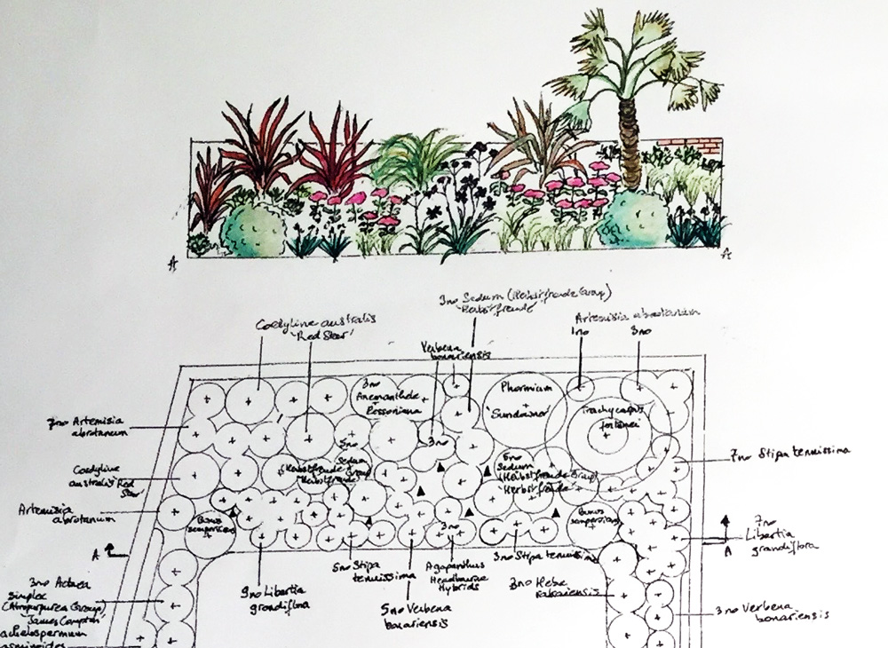 Square-Garden-Design-London-service-planting-plan