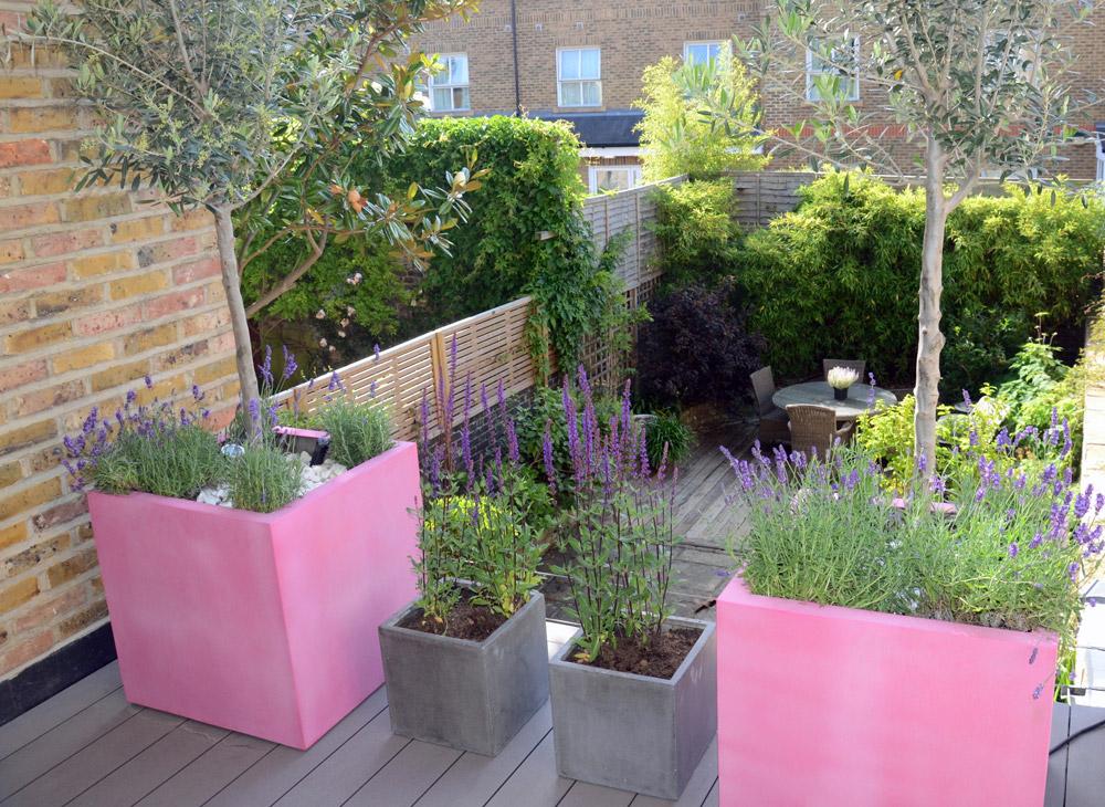 Terrace, Pots And Planters