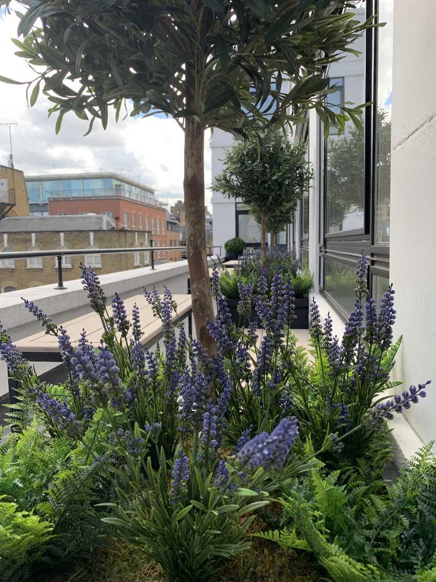 Roof terrace for an office in Mayfair • Square Garden Design